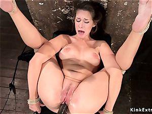 scorching butt hog tied dark haired vulva toyed