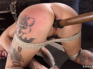 Toned alt blondie with thick melons hog tied